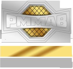 Pro MMA Betting